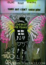 Street Art of London (Live Fast Die Young) 8.18.08