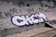 Street Art of San Francisco (Ocean Beach Chest) 3.25.10