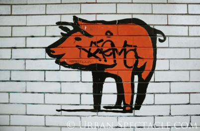Street Art of San Francisco (Pig) 1.20.12