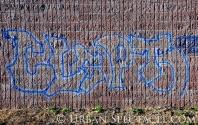 Street Art of San Jose (85 & Pollard (Clepto)) 6.7.11