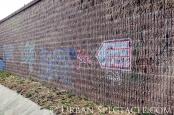 Street Art of San Jose (85 & Pollard (Fungus 2)) 6.7.11