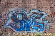 Street Art of San Jose (85 & Pollard (SG)) 6.7.11