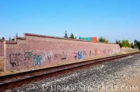Street Art of San Jose (85 & Pollard (Wall 3)) 6.7.11