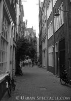Streets of Amsterdam 8.11.09 (8)
