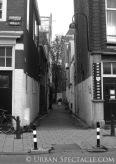 Streets of Amsterdam 8.12.09 (2)