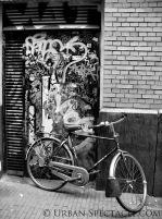 Streets of Amsterdam (Bike and Brick BW) 8.11.09