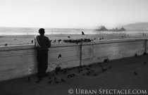 Streets of San Francisco (Bird Man Ocean Beach) 1.30.13