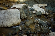 Pacifica Rocks 1.14.15