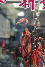 Streets of San Francisco (Chinatown Duck) 8.23.12