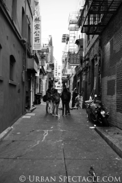 Streets of San Francisco (Chinatown Students) 8.12.13