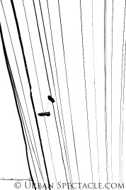 Lines and Shoes12