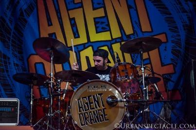 Agent Orange31