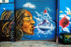 Street Art of Oakland (Blow) 1.20.16